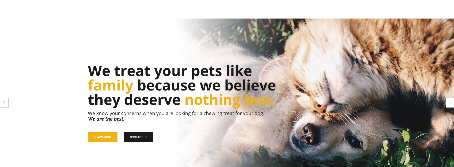 Petta – Pet Care WordPress Theme Overview