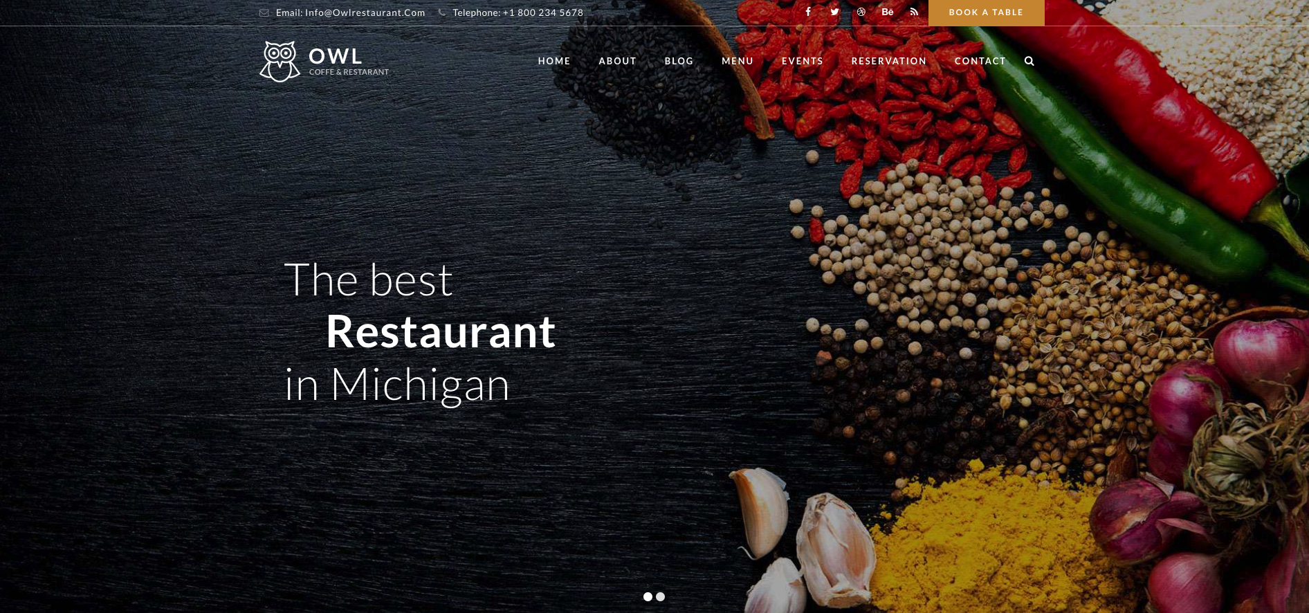 OWL – Multipurpose Restaurant & Cafe WordPress Theme
