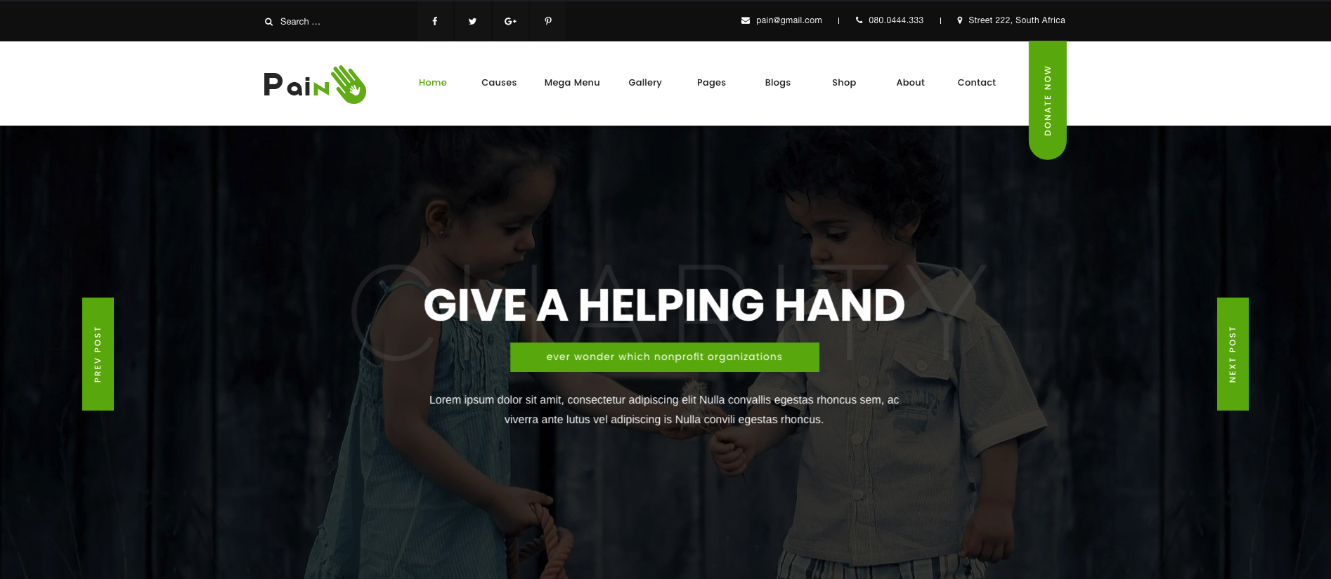 Pain – Charity & Fundraise Non-profit WordPress Theme
