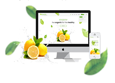 Organiko Review: A Food and Farm Business Theme Helping You Grow Your Business