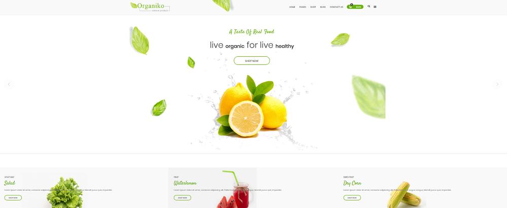 Organiko Homepage 1