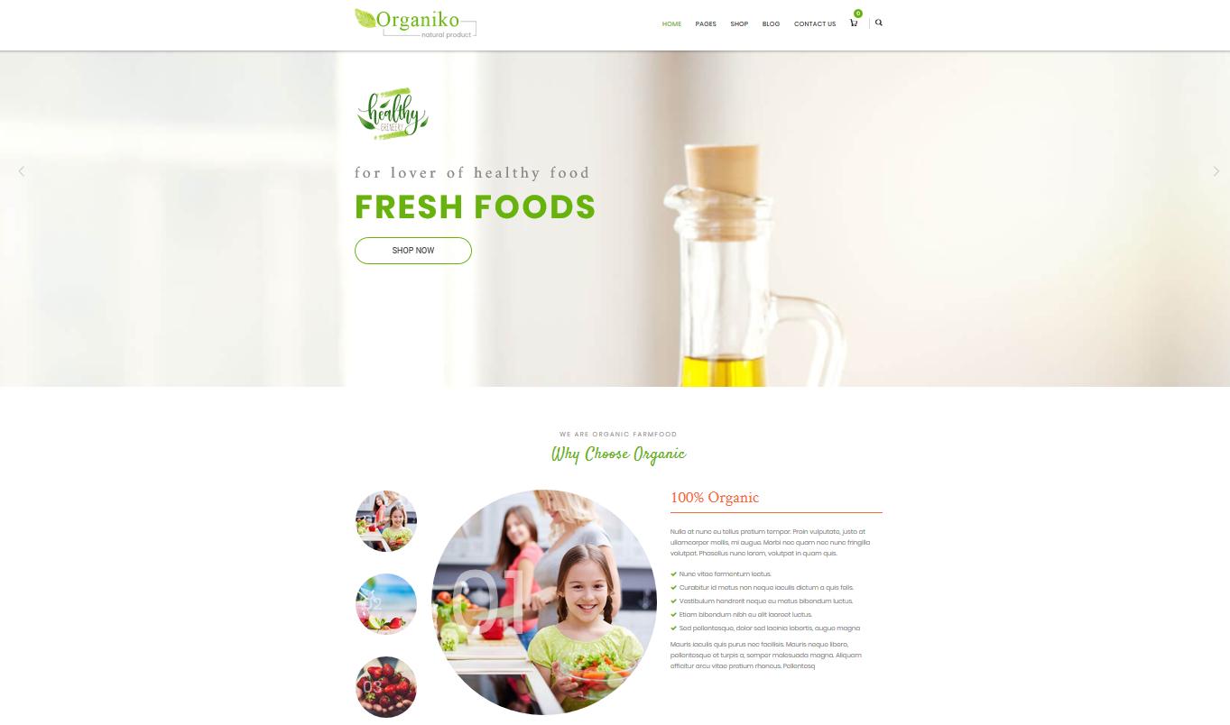 Organiko Homepage 4